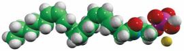 anandamide phosphate (AEA-P)